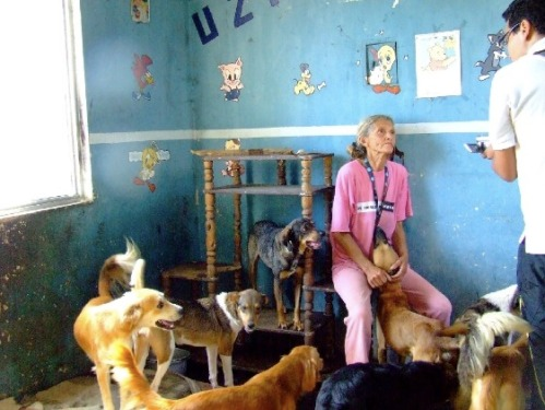 Inside Graciela´s House! She really needs our help, guys! Let´s do our best to find new families for her pets!!!